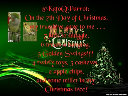 Seventh Day of Christmas (By @KatoQParrot (Tw))