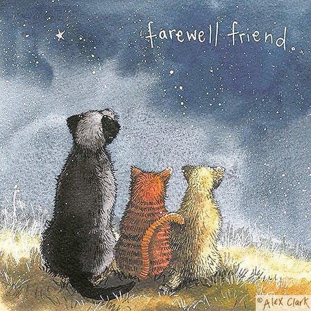 Farewell Friend pictorial