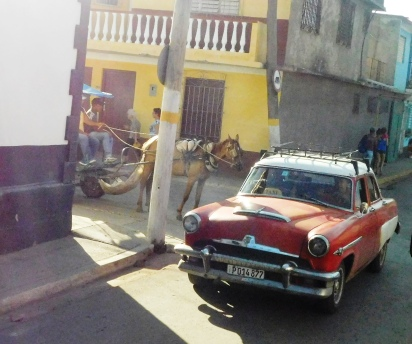 small horse and chevrolet in Havana