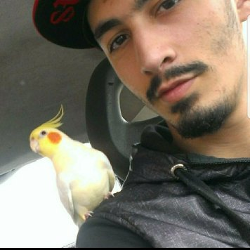 Ayoub with Pikachu in his car (Courtesy of Ayoub Hadidi (FB))