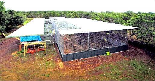 Aviary under partial construction (Courtesy of Chris Biro)