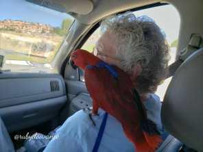 Riding on Grandma's shoulder through Utah (Courtesy of @Rubydoovance (IG))