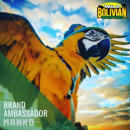 Manko was honored to be designated official brand ambassador for Wild Bolivian Adventures (Courtesy of @i_met_manko (IG))