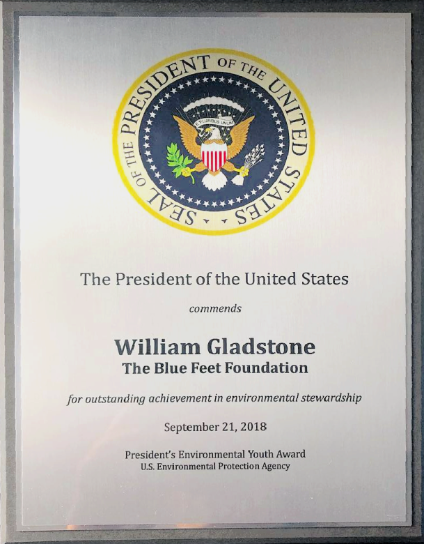 Presidential award (Courtesy of @thebluefeetfoundation (IG))