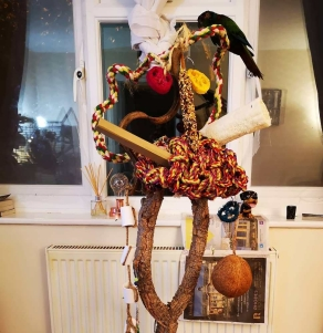 Boo's special home-made play stand (Courtesy of @Charley_jorja_photography (IG))