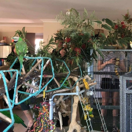 Have enough jungle gym to make you happy? (Courtesy of Shantal Telly Byrd)