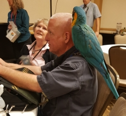 Blue-throated macaw Little Edy sits on shoulder of owner, Lewis (Buddy) Waskey IV, as ambassador of his breed