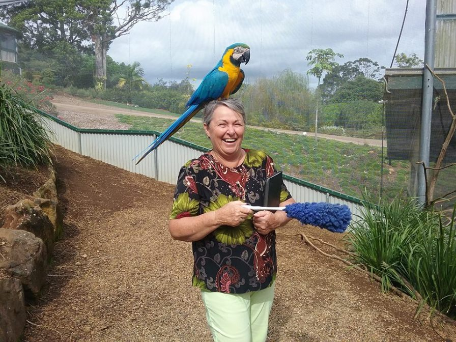 Marj at Maleny Bird Park in Queensland, a most inspiring spot for Owen (Courtesy of Owen Pointon)